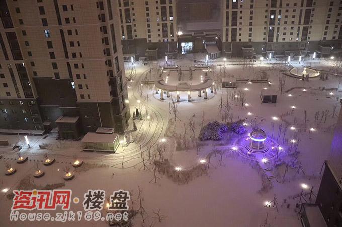 小区雪景实拍图